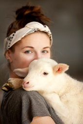 sheep00165