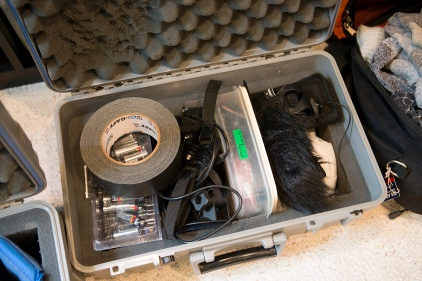 GoPro / misc. case. Gaff tape (even better than duct tape), mounts, batteries, external mic